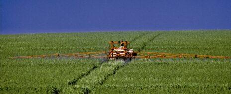 Agrotoxicos Campo